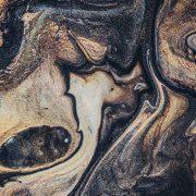 Linea aspera et tenera I ілюстрації до творів Юрія Олеши